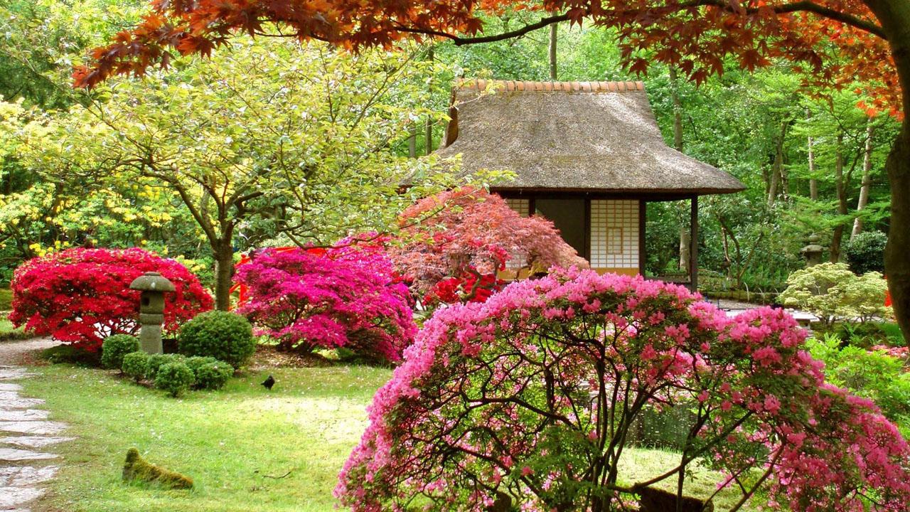 Сады цветов и деревьев их оформление