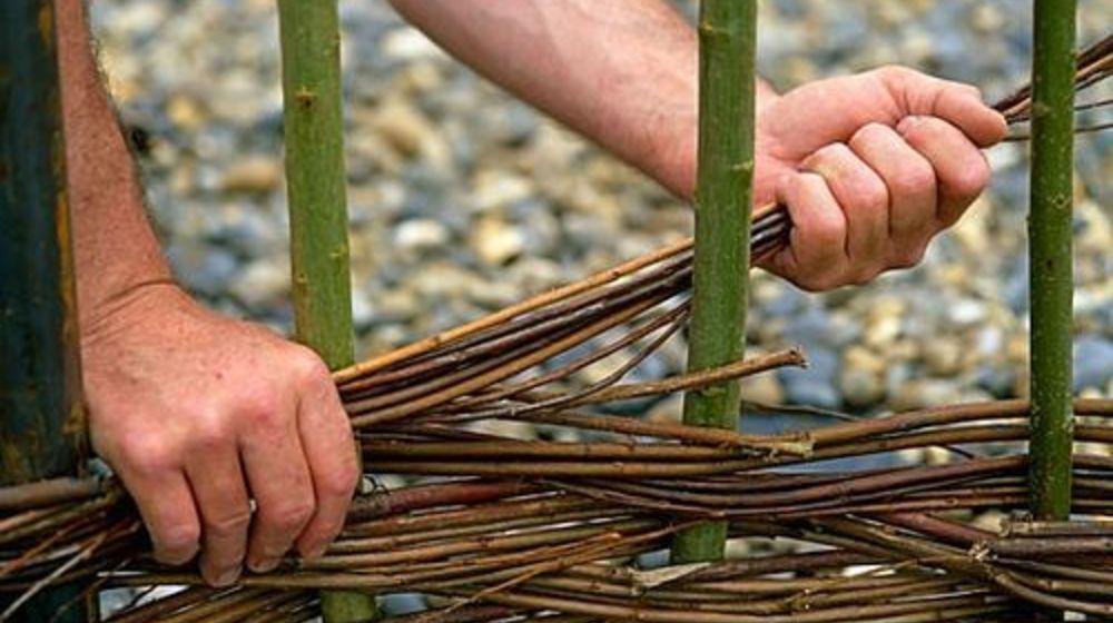 Как сделать плетень из ивы своими руками