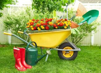 выбрать садовую тачку